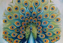 Peacocks / by Shannon Walbran
