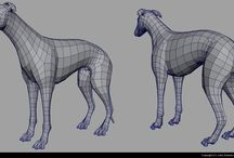 Animals_Topology