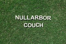 Nullarbor Couch / Nullarbor Couch is a popular choice for homeowners choosing a lawn that presents value for money, bearing lower upfront cost. Best suited for areas receiving 7-8 hours of direct sunlight per day, this fine leaf variety is a summer stunner – showcasing a deep green colour and tidy appearance.