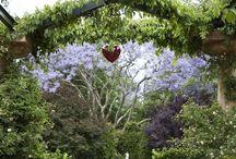 Cottage Garden <3
