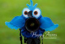 Cute ways to capture children's smiles / Camera buddy, camera creature, lens buddies etc