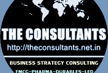 India Business Consultants Delhi India