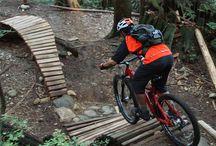 Cycling - MTB
