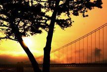 M&M California Adventure Fall 2014 / by Meghan ATB Reese