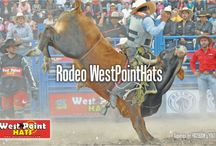 Rodeo / Fotos de rodeos