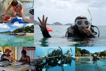 Professional training / A snapshot of our environmentally focused professional dive training.