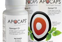 Apocaps / Apocaps  powerful nutraceutical supplement designed by Dr. Demian Dressler, DVM, author of The Dog Cancer Survival Guide is now available for dog lovers in stores, at vet offices, and online.