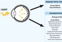 Sleep and circadian biology