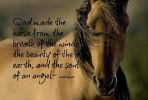 Beautiful, Inspiring, Kind...
