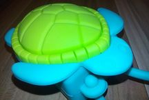 All About Turtles / All About Turtles | tortoise