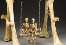 cosas de calaveras/esqueletos/ cráneos