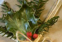 Xmas craftberry bush