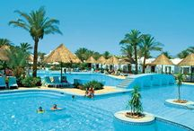 فندق سونستا بيتش, شرم الشيخ بمصر / يقع بالقرب من سوق خليج نعمة