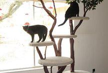 Kissojen kiipeilypuut yms.