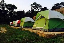 Camping in Coorg / Coorgexpress presents number of campsites in the foothills of Coorg for the adventure seekers. These campground offers unexplored trekking routes, adventure activities & unforgettable camping experiences. Camp out in Coorg and stay close to nature.