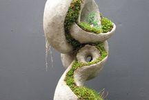 растительные конструкции