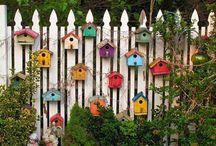 inspiracje ogrod