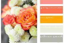 Colors / by Elisabeth Lane