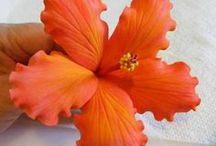 Flores pasta de goma