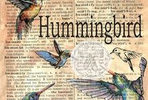 Hummingbird idea's