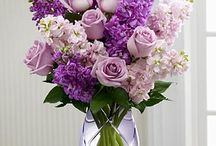 Flower Type - Lavender/Snapdragon/Hyacinth