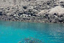 Ocean / Galagos Islands