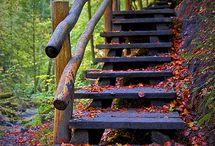 My favorite Season! / by Kathleen Fewer