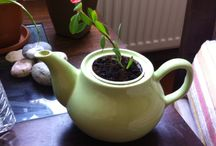Nice ideas for home / Lovely old pots