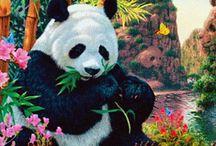 Imagenes Animadas de Osos Pandas Hermosos
