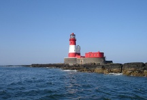 Seahouses and the Farne Islands