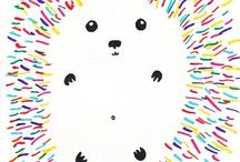 Animals - Echidnas, Hedgehogs, porcupines