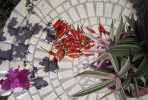 Tables en mosaïque et fer forgé / Pour mettre un rayon de soleil dans votre jardin, la mosaïque sera votre meilleur allié. Réalisée avec de véritables tuiles en céramique et un pied en fer forgé.