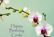Happy B-day Cindy / To my sister with love where ever you are. / by Veronica