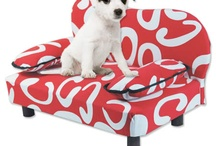 Designer Dog Couches
