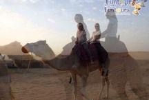 Camel Ride / Dubai Camel Ride http://www.funtoursdesertsafaridubai.com