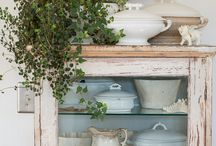 Home Decor: Plants