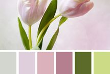 Barva - barevné inspirace