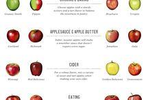 Food- Info. & Prep & Ingredients