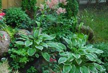 17 Kleinen Vorgarten Landschaftsbau Ideen Zu Ihrer Eindämmung Der Beschwerde Zu Definieren
