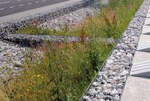 Green Stormwater Infrastructure