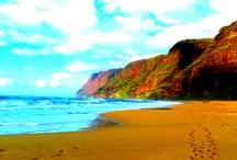 Hawaii, My Adopted State