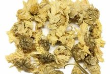 Floral Tea / Floral tea are delicious, beautiful, and healthy. Floral tea also great for mixing with other major teas.