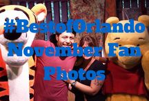 November #BestofOrlando Fan Photos / Post your photos of your Orlando vacation on our page or in the comments section to be featured in this album!   Don't miss all the things to do in Orlando this November: http://www.bestoforlando.com/articles/november-orlando-events-christmas-arrives/