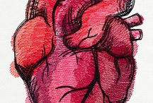 Human Heart Drawing