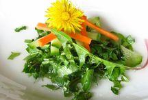 Bylinky, ovoce, zelenina pro zdraví ☺ / Bylinky v kuchyni
