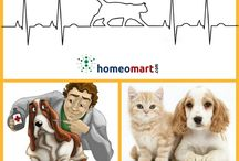 Animal and Pet Remedies in Homeopathy / Homeopathy medicines for household pets like dogs, cats. Buy pet medicines that are safe, gentle and without side effects for dog illness like wounds, allergy, arthritis, vomiting rabies etc. Cats medications for hookworm, ringworm, animal bite, abscess, conjunctivitis etc. Get pet meds without vet prescription, buy online, worldwide delivery