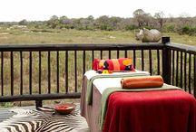 Rejse - Sydafrika