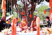 Indian Weddings / by Wedding Elegance by Nahid