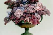 floral board: lilacs / by The Perfect Petal