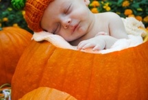Baby Stuff / by Lisa Boehmer